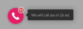 widget call back na stronę